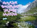 bahar quran